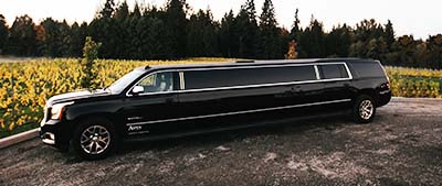 2016 Denali Limousine
